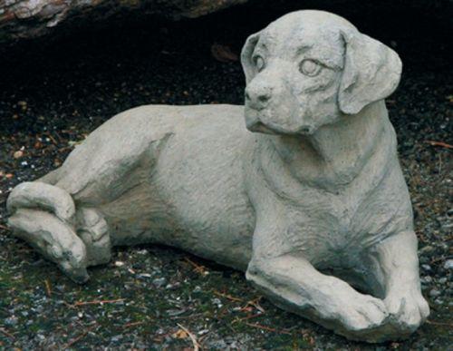Medium Labrador