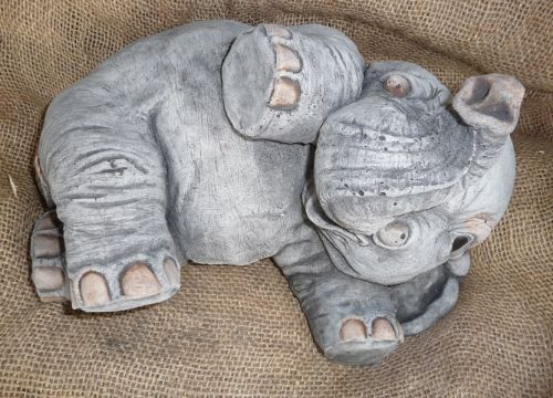 Elephant Lying on Side