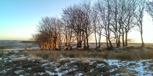 8 Things to do In January 2018 on Exmoor