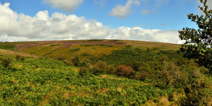 A classic moorland walk