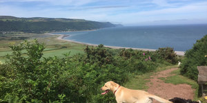 Please vote for Exmoor!