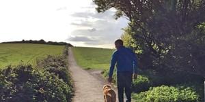 Dog friendly walk via Kilve Beach :The East Quantoxhead Loop