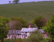Limecombe Cottage