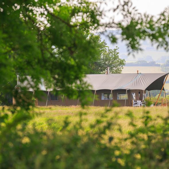 Middle Stone Farm