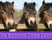Exmoor Pony Centre