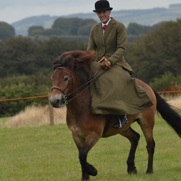 Exmoor Pony Society Breed Show