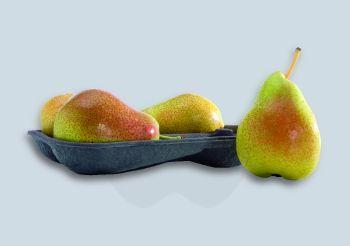 Fruitil Pear